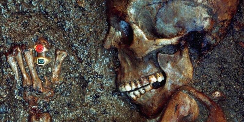 I Tesori di Ercolano e Pompei